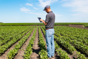 farmer researching on his tablet